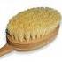 skin-brush